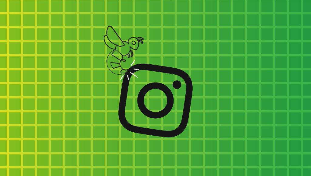 ¡Avíspate en el 2020! Activa tu negocio con las tendencias de Instagram